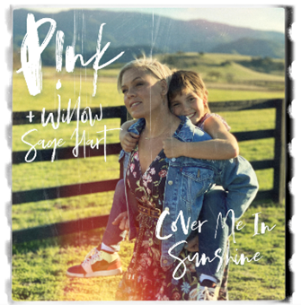 PINK Willow Cover